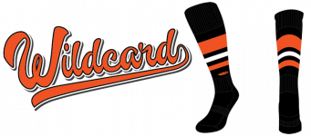 Baseball Sock Company